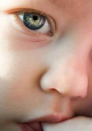 Child-1432763