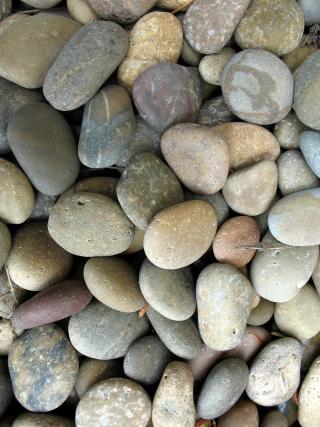 On-da-rocks-1177429